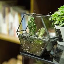 online shop wall hanging geometric hexagon glass terrarium box
