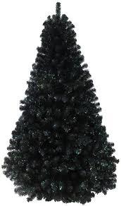 tree black tree the black princess fir tree