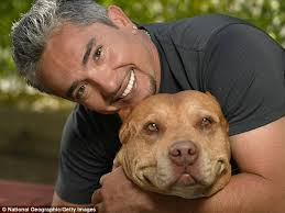 Seeking Season 1 Episode 3 Pitbull Whisperer Cesar Millan Sued By Florida Attacked By Pit