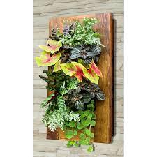 Wall Garden Planter by 25 Best Indoor Vertical Gardens Ideas On Pinterest Wall Gardens