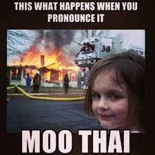 Muay Thai Memes - 244 best muay thai images on pinterest marshal arts boxing
