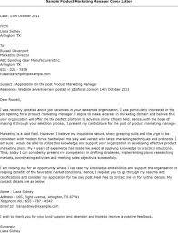 Sample Brand Manager Resume by B2b Marketing Director Resume Online Marketing Manager Resume