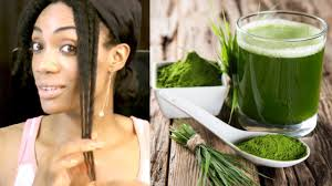 green drink faster hair growth with this green drink natural hair care 2017