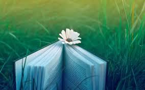 books wallpaper book hd backgrounds pixelstalk net