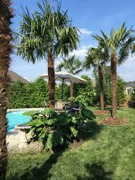 swimming pool retreats home u0026 garden landscapes