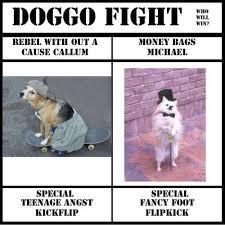 Fight Meme - doggo fight memes