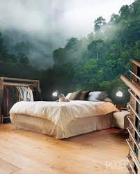 43 enchanting forest wall murals for deep and dreamy home decor
