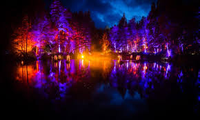 enchanted forest of light tickets video watch stunning drone footage of perthshire s enchanted forest