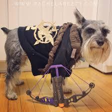 Dog Costume Halloween Dogniss Everdeen Katniss Hunger Games Mockingjay Dog