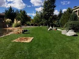 Reno Green Landscaping by Property Maintenance For Homeowner U0027s Associations Reno Nv