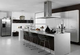 ikea kitchen design ikea kitchen cabinet reviews 2013 u2013 designs