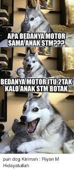 Pun Dog Meme - 25 best memes about pun dog pun dog memes