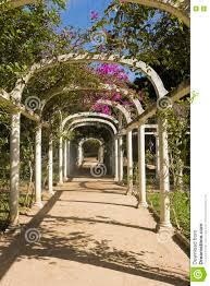 Photos De Pergola Arched Pergola Path In Botanical Garden Rio De Janeiro Stock