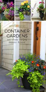 Summer Container Garden Ideas Decorative Ideas For Creating A Summer Container Garden Garden
