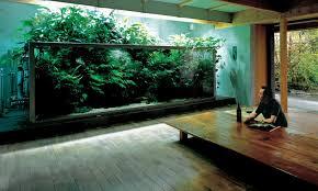 japanese aquarium what is a nature aquarium aquarium zen