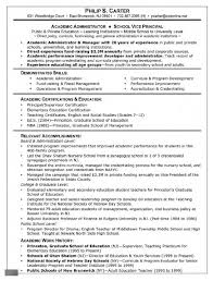 Expense Report Example by Resume Template 8 Examples Curriculum Vitae Expense Report