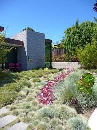 465 best desert landscaping ideas images on pinterest cacti