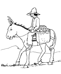 free farm animal coloring pages 1619 best animals images on pinterest drawings coloring books