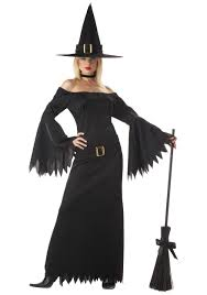 naughty witch costume private costume