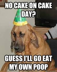 No Cake Meme - no cake on cake day guess i ll go eat my own poop sad birthday