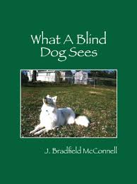 Dog Going Blind What To Do What A Blind Dog Sees Kindle Edition By J Bradfield Mcconnell