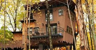 25 Best Treehouse Hotels  Rentals