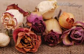 preserving flowers an everlasting bouquet how to preserve your wedding flowers