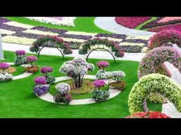 hd most beautiful and biggest natural flower garden in the world