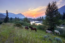 Wyoming landscapes images Landscape mark tepe photography jpg