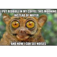 Sexy Monkey Meme - 40 coffee memes all caffeine addicts will relate to