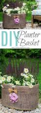 20491 best hometalk gardening images on pinterest gardening