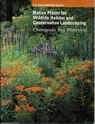 native climbing plants native plants for wildlife habitat and conservation landscaping