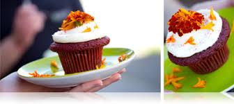 edible flower garnish garnishing with edible flowers basic tips marx foods