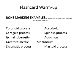 Anatomy And Physiology Cells And Tissues Flashcard Warm Up Anatomy Vs Physiology Anatomy Is The Structures