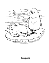 colouring pages of animal homes arctic habitat colouring pages