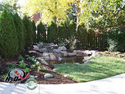 landscape pond ideas