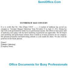 Sample resume internet marketing manager Business development manager CV template