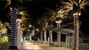palm lighting tree wrapping and tree lighting mobile illumination