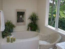 Ideas For Decorating A Bathroom On A Budget Bathroom Nice Small Bathroom Design Ideas On A Budget Further