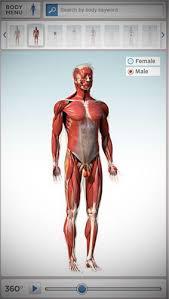 Netter Atlas Of Human Anatomy Online Anatomy Atlas Netter Ideal 10 Best Educational 3d Anatomy Atlas