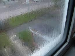 condensation chambre des moisissures et encore des moisissures