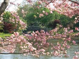planterra loves botanical gardens u0026 arboretums planterra events