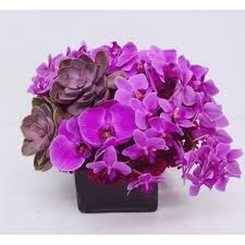 purple orchids purple orchids and succulents extravaganza ultra luxury nyc
