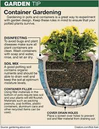 Patio Container Garden Ideas Container Gardening Container Gardening Gardens And Plants