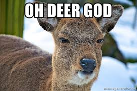 Oh Deer Meme - oh deer god angry deer meme generator