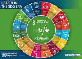 who sustainable development goals sdgs