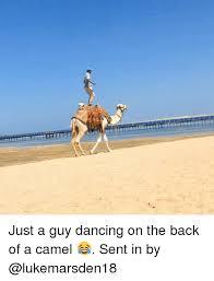 Camel Memes - 25 best memes about camel camel memes