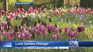 chicago flower and garden show chicago flower u0026 garden show in