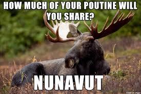 Moose Meme - canadian pun moose meme on imgur