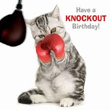 88 best cat birthday cards images on pinterest cat birthday